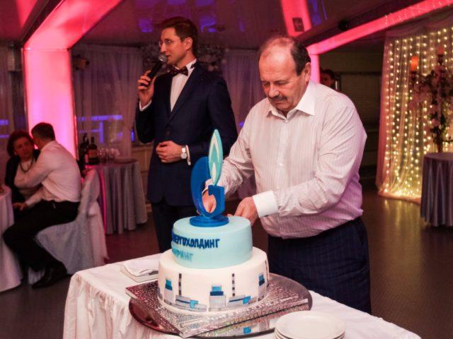 Новогодний торт. День Энергетика