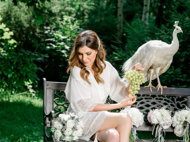 Живой павлин на утре невесты