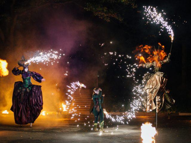 Выступление театра огненных легенд на тематической свадьбе
