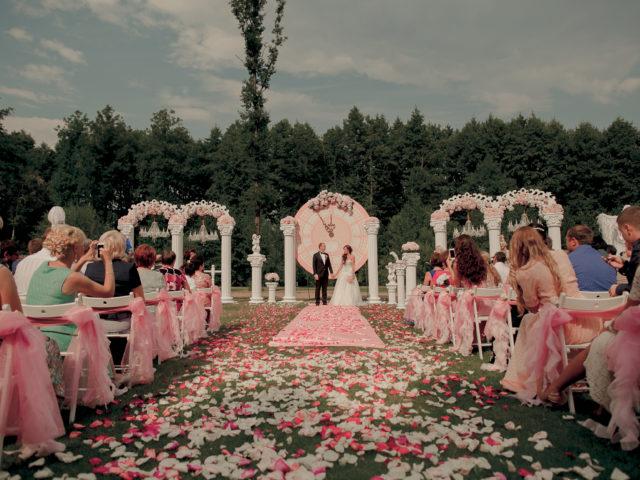 Свадьба в стиле Золушка. Регистрация брака.